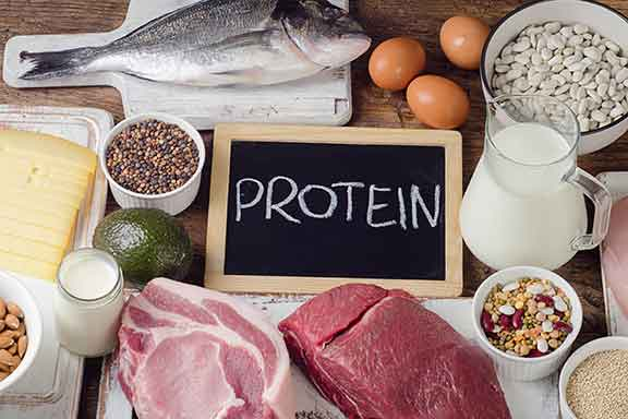 Foods-High-In-Protein